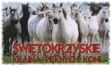 zobacz info Świętokrzyskie Świętokrzyskie - kraina pięknych koni