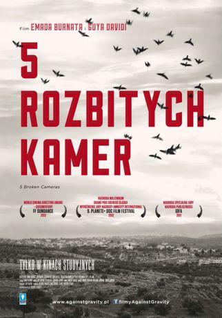 Kino Fenomen WDK Kino