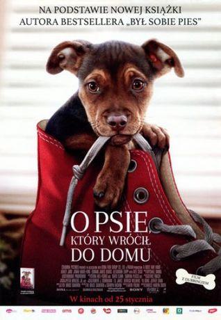 Helios Kino O psie, który wrócił do domu