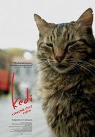 Kedi - sekretne życie kotów / Kino Konesera_Helios
